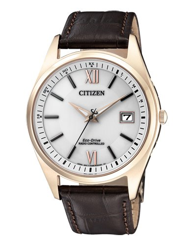 Funkuhr Citizen AS2053-11A